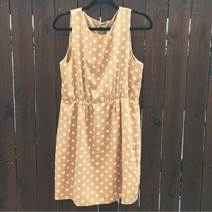 J. Crew polka dot dress size 12